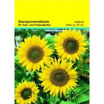 Samentütchen Zwergsonnenblume 82 x 114 mm