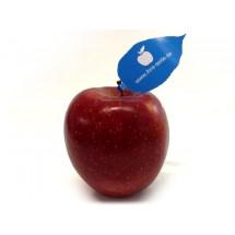 Logo-Werbeapfel mit PR-Blatt - rot
