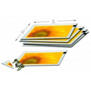 Samentütchen Zwergsonnenblume 80 x 55 mm